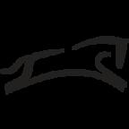saumur.org